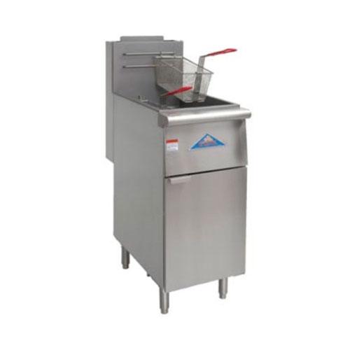 Fryer 40 LB - Propane